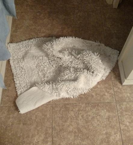 rug 2